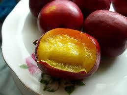Govner plum