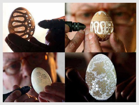 designs on eggs