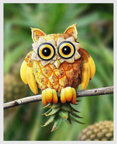 Owl made with bananas and pineapple