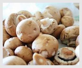 mushroom PT