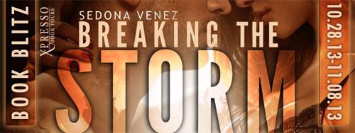 BreakingTheStorm-Banner