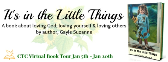 Little things Tour Banner